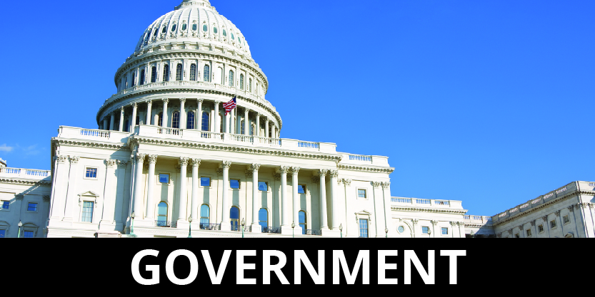 government-01
